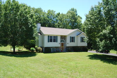 Bedford County Single Family Home For Sale: 1098 Old Dominion Ct