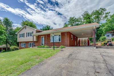 Roanoke County Single Family Home For Sale: 2319 Cantle Ln
