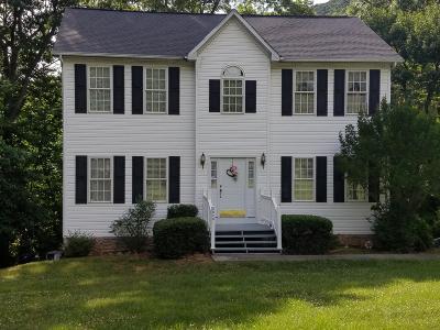 Roanoke Single Family Home For Sale: 2020 Ruritan Rd