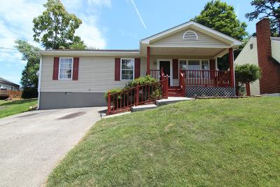 Vinton Single Family Home For Sale: 228 Raleigh Ave
