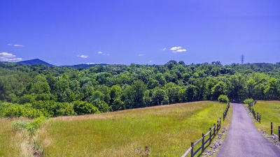 Roanoke County Residential Lots & Land For Sale: Shelbourne Ave