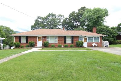 Roanoke County Single Family Home For Sale: 739 Chester Ave