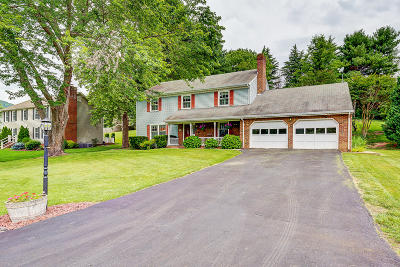 Single Family Home For Sale: 280 Ivy Ln