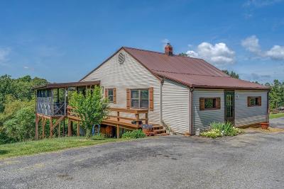 Blue Ridge Single Family Home For Sale: 1173 Wooldridge Rd