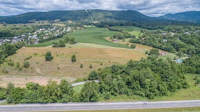Roanoke City County Residential Lots & Land For Sale: 183 Welches Run Rd