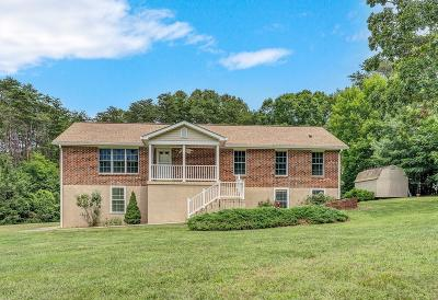 Single Family Home For Sale: 890 Belle Isle Dr