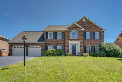 Roanoke County Single Family Home For Sale: 2910 Edgefield Cir