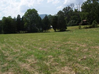 Roanoke County Residential Lots & Land For Sale: 5145 Cove Rd