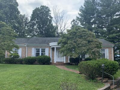Roanoke County Single Family Home For Sale: 1259 Chestnut Mountain Dr