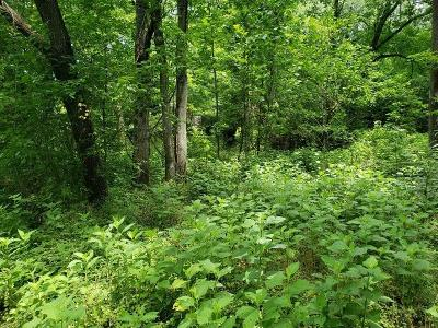 Roanoke City County Residential Lots & Land For Sale: 1384 Brooks Ave SE