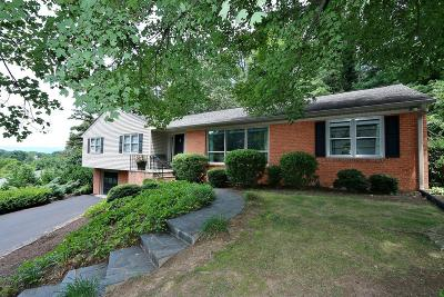 Roanoke City County Single Family Home For Sale: 1415 West Dr SW