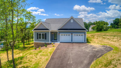 Blue Ridge Single Family Home For Sale: 385 Thornblade Way