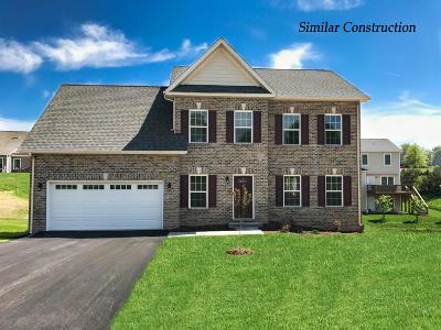 Roanoke County Single Family Home For Sale: 4248 Faircrest Ln