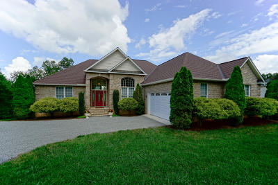 Bedford County Single Family Home For Sale: 494 Peaks View Dr