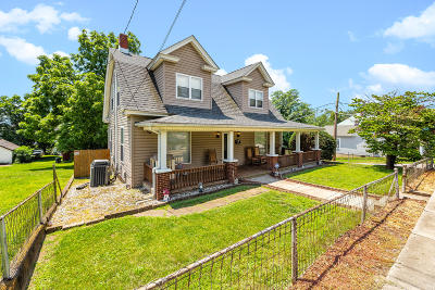 Roanoke City County Single Family Home For Sale: 1601 Tazewell Ave SE