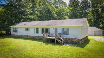 Buchanan Single Family Home For Sale: 195 Ross Ford Rd