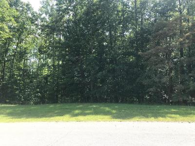 Blue Ridge Residential Lots & Land For Sale: Lot 30 Thornblade Way