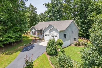 Bedford County Single Family Home For Sale: 3317 Bluewater Dr