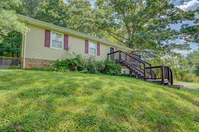 Blue Ridge Single Family Home For Sale: 1405 Bore Auger Rd