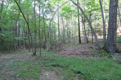 Roanoke County Residential Lots & Land For Sale: Foxfire Rd