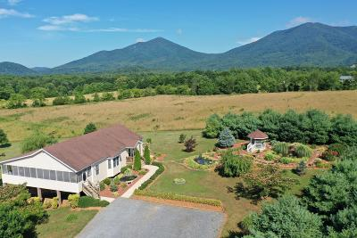 Bedford County Single Family Home For Sale: 1290 Toms View Dr