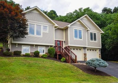 Roanoke Single Family Home For Sale: 1628 Read Mountain Rd