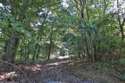 Residential Lots & Land For Sale: Grandview Dr