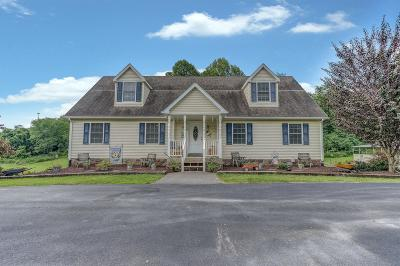 Troutville Single Family Home For Sale: 306 Golden Dr