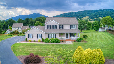 Roanoke Single Family Home For Sale: 475 Eagle Ridge
