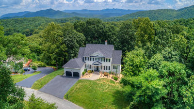 Roanoke VA Single Family Home For Sale: $634,950
