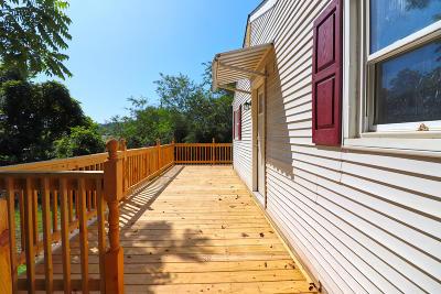 Roanoke Single Family Home For Sale: 2002 Greenbrier Ave SE
