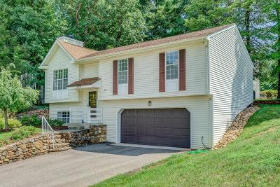 Roanoke Single Family Home For Sale: 4634 Whipplewood Ct