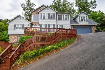 Roanoke Single Family Home For Sale: 5300 Merriman Rd