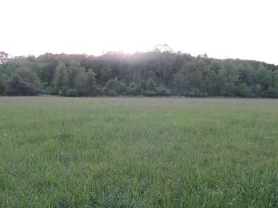 Residential Lots & Land For Sale: Houston Mines Rd