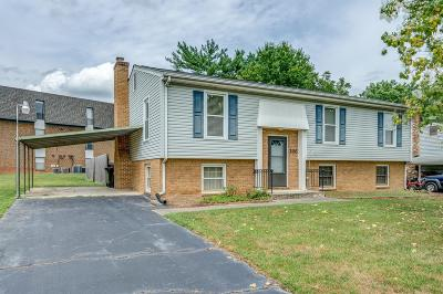 Roanoke County Single Family Home For Sale: 206 Clubhouse Dr