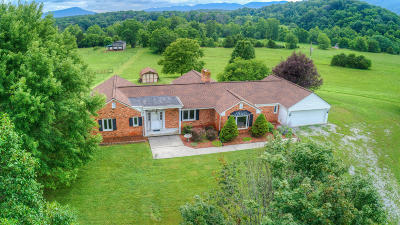 Fincastle Single Family Home For Sale: 3155 Grove Hill Rd