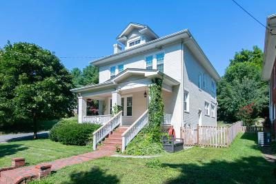 Roanoke City County Single Family Home For Sale: 2231 Carolina Ave SW