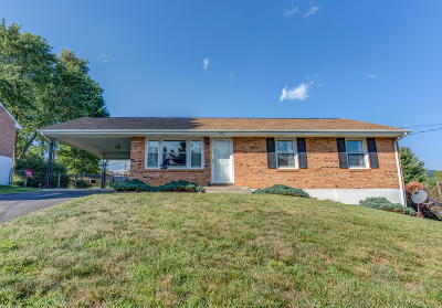 Vinton Single Family Home For Sale: 545 Holiday Rd