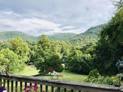 Single Family Home For Sale: 8161 Bent Mountain Rd