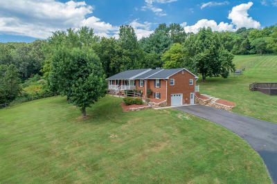Buchanan Single Family Home For Sale: 1704 Old Hollow Rd