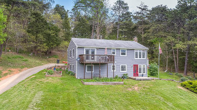 Botetourt County Single Family Home For Sale: 407 Sunset Dr