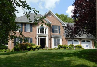 Roanoke VA Single Family Home For Sale: $359,950