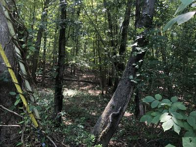 Roanoke Residential Lots & Land For Sale: Electric Rd