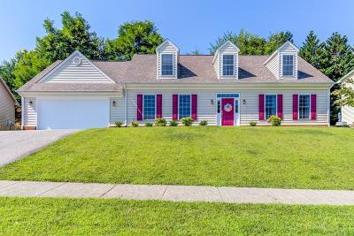 Roanoke County Single Family Home For Sale: 4833 Hickory Ridge Ct