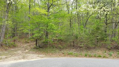 Residential Lots & Land For Sale: Purgatory Mountain