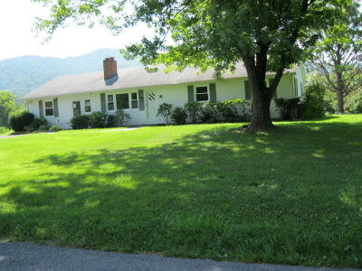 Bedford County Single Family Home For Sale: 4625 Goose Creek Valley Rd