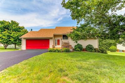 Roanoke County Single Family Home For Sale: 5447 Winesap Dr