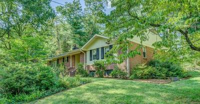 Roanoke County Single Family Home For Sale: 4938 Greenlee Rd SW