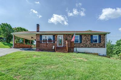 Botetourt County Single Family Home For Sale: 711 Mountain Pass Rd