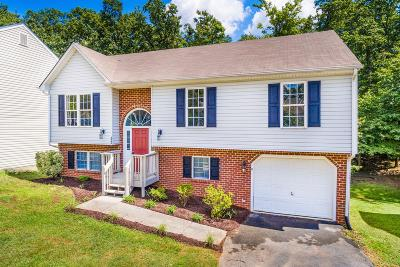 Roanoke County Single Family Home For Sale: 5069 Meadow Crossing Ln NE